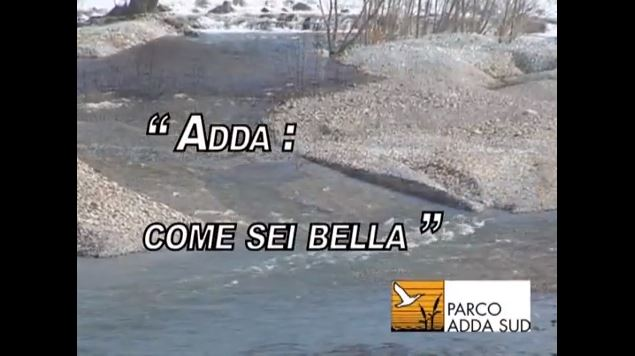 adda come sei bella